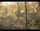 秋田の風景(の一部) in Autumn 2007