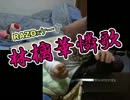 『RAZO』林檎華憐歌弾いてみた『ケーすり』