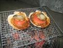 火鉢で一杯飲んでみた ~炙り鮭とば&帆立貝焼き~