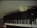 アクエリオンEVOL_OP「君の神話」ピアノで