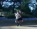 【桜】スイートマジック踊ってみました【香】
