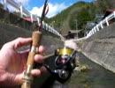 渓流魚をルアーで釣ろう(6回め)
