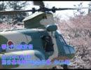 響と行く航空祭 2012年4月8日熊谷基地開庁記念行事 さくら祭