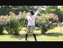 【茶々猫】恋愛サーキュレーション【踊ってみた】