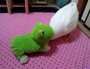 カエルに捕食されるアヒル