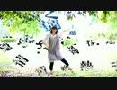 【おたおめ!】 コトバトラボラト 踊ってみた 【彩空】