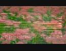 【第4回東方ニコ童祭】花映塚風デザイアドライブ【東方自作アレンジ】