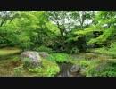 2012年京都に行ってきた(42)【濃緑の宝厳院】