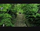 2012年京都に行ってきた(45)【濃緑の二尊院~】