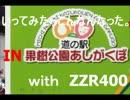 いってみたらこんなんなった【秩父散歩】with ZZR400