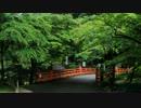 2012年京都に行ってきた(46)【濃緑の高雄】