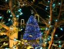 クリスマスソング集
