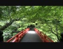 2012年京都に行ってきた(48)【濃緑の西明寺】