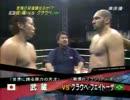 武蔵 vs グラウベ・フェイトーザ