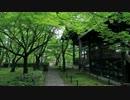 2012年京都に行ってきた(64)【真如堂・金戒光明寺】