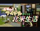 【アイマス×Sims3】ドキッ!!アイドルだらけの北米生活 part6