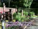 水戸市七ッ洞公園(秘密の花苑)