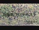 【ニコカラ】 哀傷歌コンテキスト 【On Vocal】