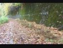 【旧道のススメ】国道360号線編 文童子・大瀬トンネルの旧道①