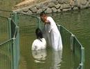 関西人の挑戦!イスラエルでセルフ洗礼してみた。