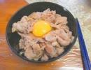 【ゆっくり】すた丼(再現)の作り方