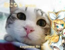 【鏡音リン】風になる【猫の恩返し】