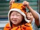 【新唐人】家庭孤児院の火災で7人死亡 責任投げ出す当局
