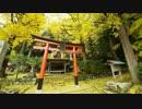2012年京都に行ってきた(74)【紅葉の常照皇寺・岩戸落葉神社】