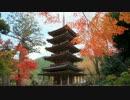 2012年京都に行ってきた(79)【紅葉の木津】