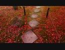 2012年京都に行ってきた(84)【紅葉の霊鑑寺・安楽寺】