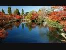 2012年京都に行ってきた(86)【紅葉の永観堂】