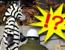 シマウマ爆走 多摩動物公園で防災訓練