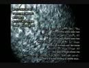 【結月ゆかり】 CONDUIT_REVATAIL=HYMMNE/. 【オリジナルヒュムノス】