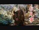 【実況】 加速するスカイリムの旅 page45