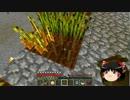 【Minecraft】科学の力使いまくって隠居生活 Part20【ゆっくり実況】