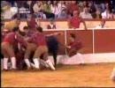 ポルトガルの闘牛その2
