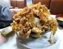 【大食い】ライフの肉丼大盛り(早稲田) 頭蓋骨を奉る高尾稲荷神社