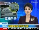中国で暴風雨、24人死亡 卵大ひょう、車の窓穴だらけ