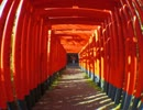 もやしもんの人が写真ぶらり旅「三重県桑名市2 九華公園」編