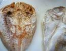 【異食】フィリピン輸入食材『アイリーン』で怪しい魚買ったった
