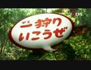 N3DS『モンスターハンター4』 ティザーCM