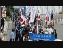 6月02日 拉致被害者奪還デモ in 大阪 3-3 【Dナモ視点】