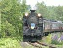 【鉄道】SLオホーツク号 2012 試運転【映像集】
