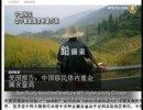 【新唐人】中国移民 血中重金属含有量が高