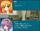 【第5回東方ニコ童祭】東方野球in熱スタ2007F 第5話-5