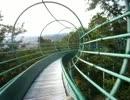 203mの滑り台がある仙元山見晴らしの