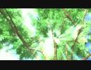 【第10回MMD杯EX】Painの裏話とか【TIGER&BUNNY】