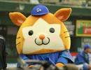 横浜DeNAベイスターズを応援しよう!2012-2013