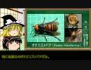 ゆっくり毒物解説 ~其ノ五:スズメバチ~