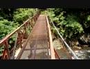 カメラテスト 浜松市天竜区 吊り橋と渓流
